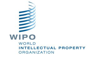 MultiLing-IP-PCT-wipo-en